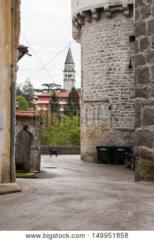 Photo of Buzet City in Istra Croatia