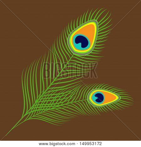 Peacock two feather set collection. Exotic tropical bird colorful tail. Isolated. Brown background. Flat design. Vector illustration
