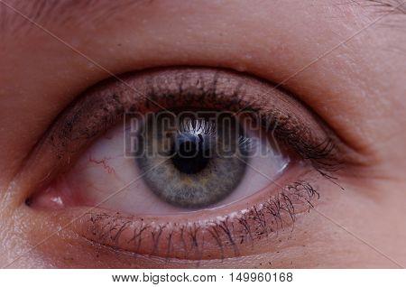 Open green woman eye, closeup. Abstract background.