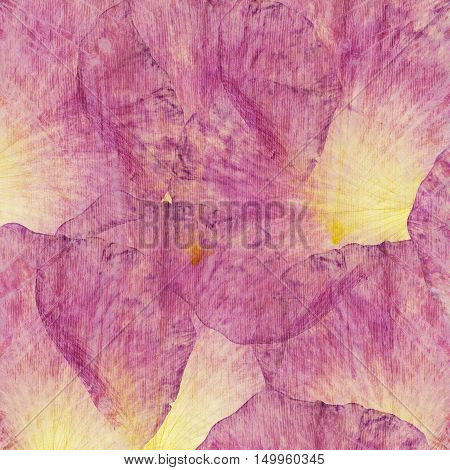 Floral tender collage made of rose petals and transparent wooden texture. Pattern for scrapbook cushion blanket and pillow plaid or tablecloth cloth bedcloth shawl and bandanna. Top view
