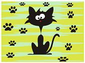 Crazy black cat traces ,colorful background  view poster