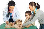 Doctor vet vaccine puppy dog and his family holding against white background poster