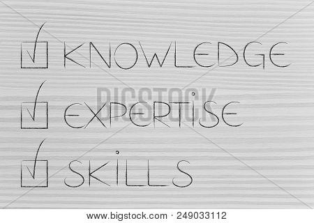 Knowledge Expertise And Skills Conceptual Illustration: Text With Cases Ticked Off