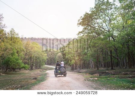 Safari Road In The India Country. Wilderness And Freedom. Adventure Experience From Safari In India.