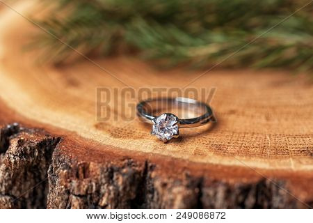 Engagement ring on tree stump, closeup