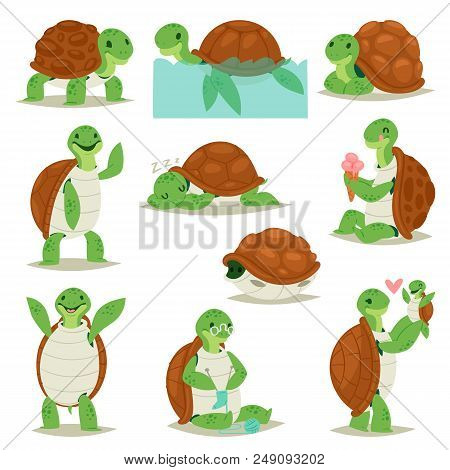 Turtle Vector Cartoon Seaturtle Character Swimming In Sea Or Ocean And Sleeping Tortoise In Tortoise