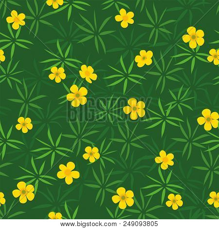 Summer Or Spring Glade Of Bright Yellow Green Buttercups Simple Seamless Pattern