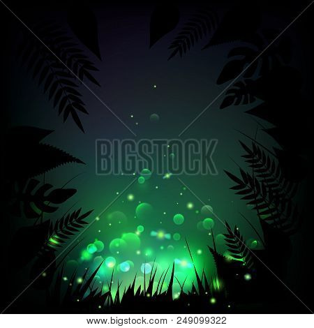 Stock Vector Illustration Fireflies Night Tropical Background. Lights, Leaves, Grass. Eps10