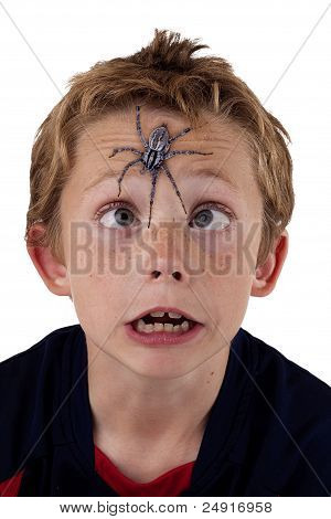 frightened boy with spider on his face