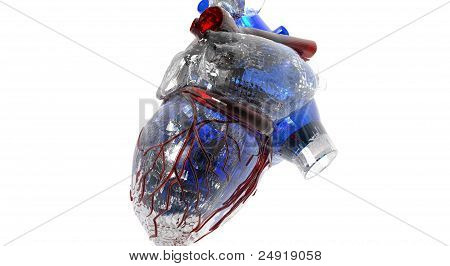Abstract representation of a human heart with anatomical details, glassy texture, over white. poster