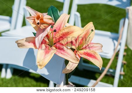 Pink And Orange Stargazer Lily Flowers Embellish  The White Rows Of Chairs At The Wedding Ceremony V