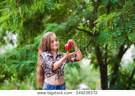 Portrait Of A Beautiful Baby Girl With Apples Like Earrings. A Girl In A Plaid Shirt On A Farm Harve