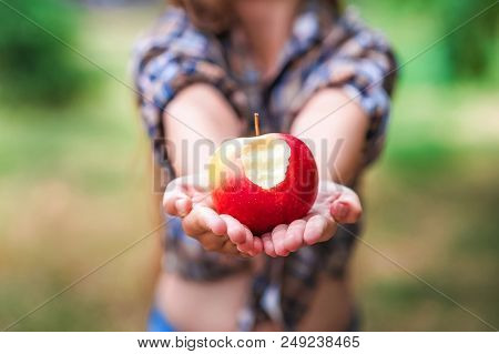 Portrait Of A Beautiful Baby Girl With Red Apples. A Girl In A Plaid Shirt On A Farm Harvesting Appl