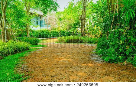 Concrete Slabs Used In Pavements In Parks., Brown Sidewalk In The Park, The Park Has Green Trees Sur