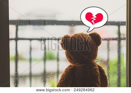 Teddy Bear Broken Heart Lonely In The Rain.