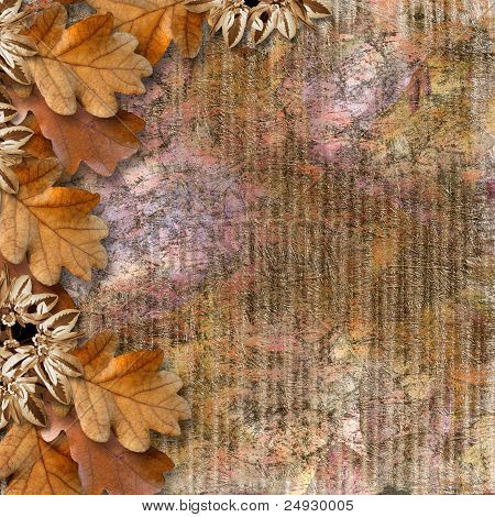 Autumn Frame Of Oak Leaves On A Grange Background.