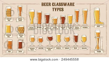 Beer Types. A Visual Guide To Types Of Beer. Various Types Of Beer In Recommended Glasses. Vector Il