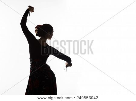 Silhouette Of Spanish Girl Flamenco Dancer On A Light Background.