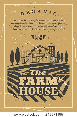 Farm House For Organic Products Retro Poster. Agriculture Card With Fields And Rows Of Vegetables An