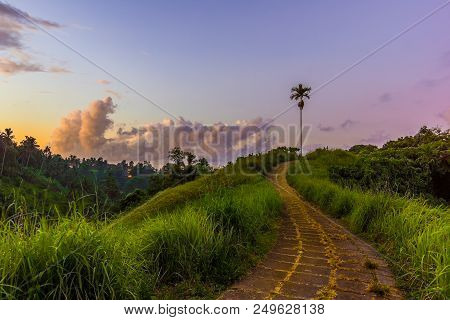 Campuhan Ridge Walk In The Morning Twilight, A Paved Pathway Over The Hills, Trail Outside Ubud, Bal
