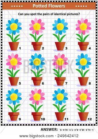 Iq And Memory Training Visual Puzzle With Potted Flowers: Can You Spot The Pairs Of Identical Pictur