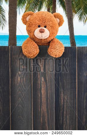 Cute Teddy Bear On The Beach With Copy Space Wood Background