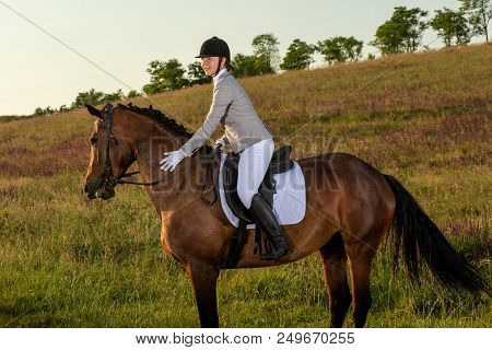 Young Woman Rider With Her Horse In Evening Sunset Light. Outdoor Photography In Lifestyle Mood. Equ