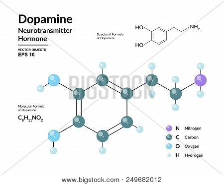 Dopamine Hormone. Neurotransmitter. Structural Chemical Molecular Formula And 3D Model. Atoms Are Re