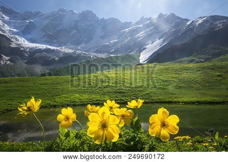 Beautiful View On Green Meadow With Yellow Flowers On Foreground Next To Mountain On Sunny Clear Sum