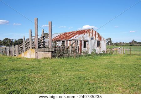 Old Rural Farm Shed And Life Stock Loading Ramp At A Rural Setting In The Late Afternoon Sun, Victor