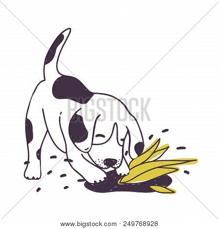 Cheerful Dog Digging Ground Near Cultivated Plant. Amusing Naughty Puppy Or Doggy Isolated On White