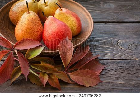 Pears. Collecting Pears. Fresh Ripe Pears In A Clay Plate With Autumn Leaves On A Wooden Table. Pear