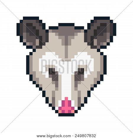 Pixel Art Possum Icon Isolated On White Background.