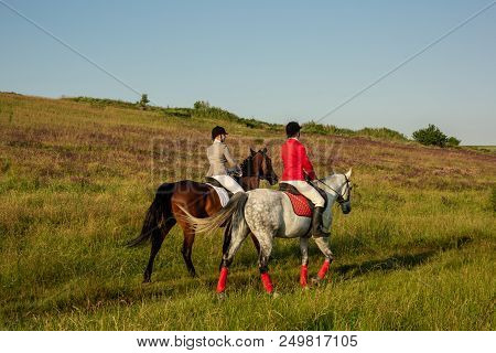 Horseback Riders. Two Attractive Women Ride Horses On A Green Meadow. Horse Riding. Horse Racing. Ri