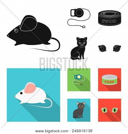 Mouse, Pet Leash, Pet Food, Kitten. Cat Set Collection Icons In Black, Flat Style Vector Symbol Stoc