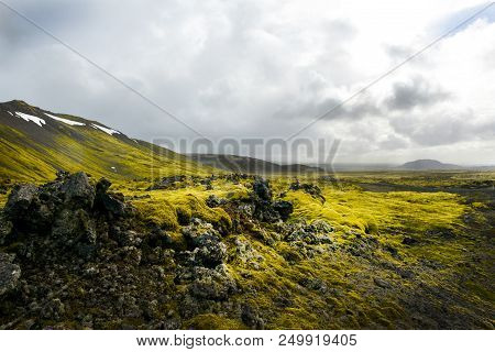 A Moss Covered Volcanic Landscape In Iceland