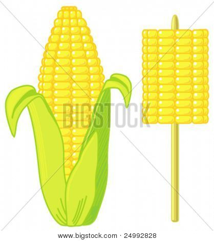 Vector Sweetcorn