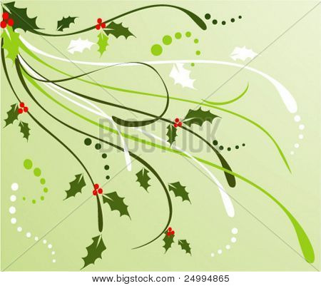 Christmas holly background with floral design