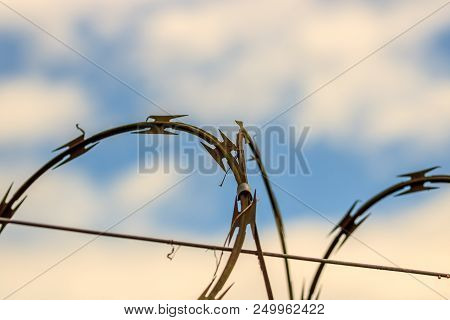 Barbed Wire. Barbed Wire On Fence With Blue Sky And Fluffy Clouds.