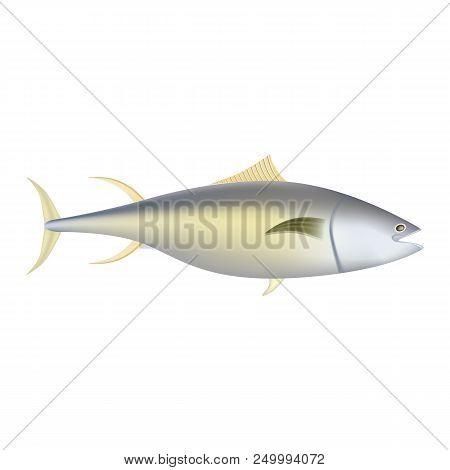 Yellowfin Tuna Fish Mockup. Realistic Illustration Of Yellowfin Tuna Fish Vector Mockup For Web Desi