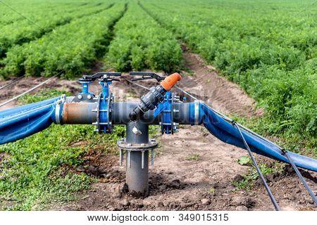 Drip Irrigation System. Water Saving Drip Irrigation System Being