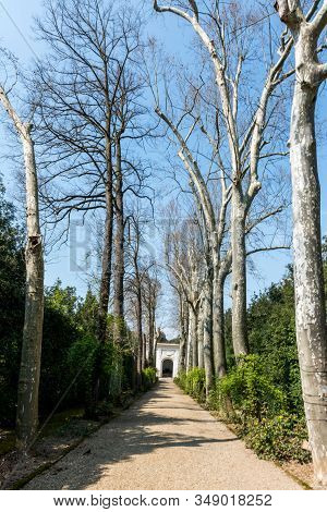 Vertical Picture Of Beautiful Narrow Way Inside Boboli Gardens In Florence, Italy