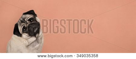 Banner With Cute Pug Puppy Dog, Sitting Down, Listening While Tilting Head, In Front Of Lush Lava Or