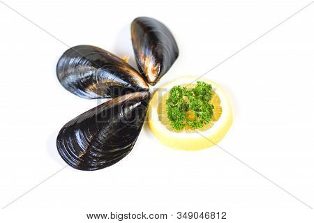 Mussels Isolated On White Background / Green Mussel Shell With Parsle And Lemon