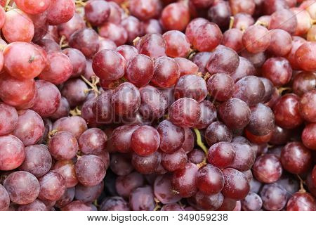 Fresh Red Grape. Ripe Red Grapes Background