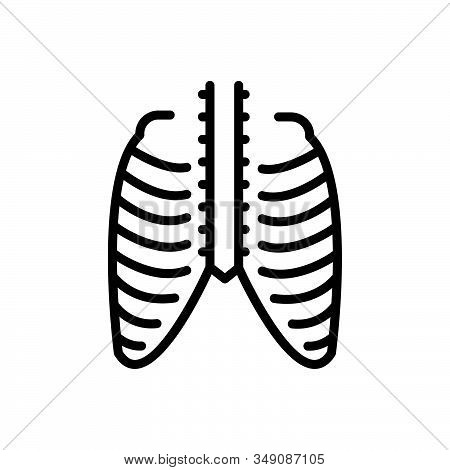 Black Line Icon For Thorax Ribcage Pain Chest Cage Skeleton Strnum Torso Xray Bone Vertebra