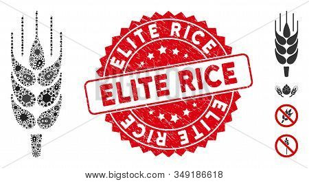 Virus Mosaic Barley Ear Icon And Round Corroded Stamp Watermark With Elite Rice Phrase. Mosaic Vecto