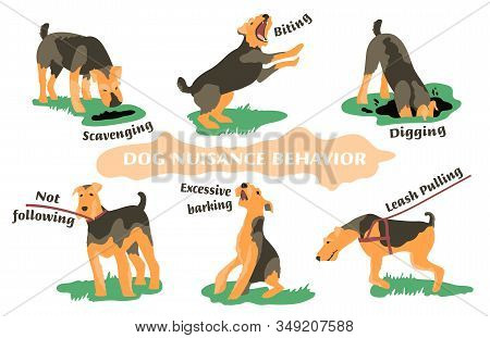Dog Behavior Problem Icon Set. Domestic Animal Or Pet Language. Airedale Terrier Training. Not Obedi