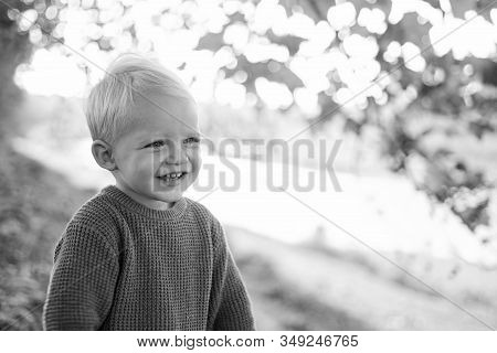 Toddler Boy Blue Eyes Enjoy Autumn. Small Baby Toddler On Sunny Autumn Day. Warmth And Coziness. Hap