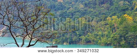 Wide View Of Teesta River Streaming With Mountain And Bunch Of Trees On The Background Covered With